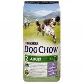 Purina Dog Chow Kuzulu Yetişkin Köpek Maması 14 Kg