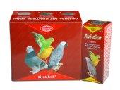 Muhabbet Kuşu Bağırsak Sistemi Geliştirici Avi...