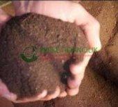 Organik Gübre (2 Lt Toprak Harcında Kullanılmalı.)