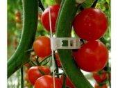 Domates Salata Klipsi Bitki Bağlama Klipsi 500 Adet