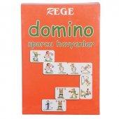 Rege Sporcu Hayvanlar Domino