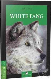 Stage 3 A2 White Fang