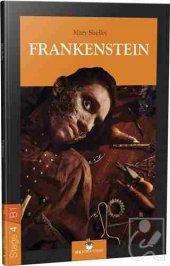 Stage 4 B1 Frankenstein
