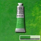 Winsor & Newton Winton 37 Ml Yağlı Boya 48...
