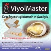 16lı Sünger Yumurta Gönderme Viyolü-2