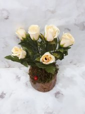 Yapay Çiçek Papatya Şakayık Gül Ağaç Tanzim 2 Adet