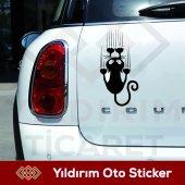 Kedi Tırmık İzi Sticker