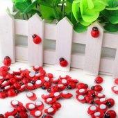 Kutu İçinde 50 Adet Küçük Boy Yapışkanlı Ahşap Uğur Böceği Hobi