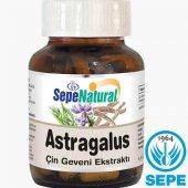 Astragalus Root Extract 90 Kapsül Çin Geveni Ekstresi