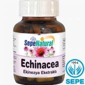 Echinacea Extract 90 Kapsül 530 Mg Ekinezya Ekstrakt Ekstresi