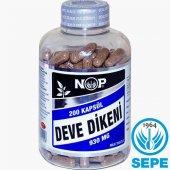 Nop Devedikeni 200 Kapsül 930 Mg Milk Thistle Seed Deve Dikeni