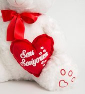 Peluş Ayı Seni Seviyorum Kalpli Ayı 50cm-3