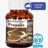 Toz Propolis Ekstresi 50 Gr Propolis Extract Propolis Ekstrakt