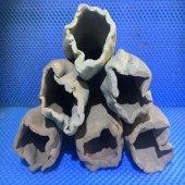 Vatoz(Pleco Longfin) Yumurtlama Küpü