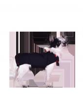 Win Pet Ameliyat Sonrası Köpek Elbisesi XXS 27*26 cm-3