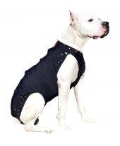 Win Pet Ameliyat Sonrası Köpek Elbisesi XL 84*74 cm-3