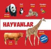 Hayvanlar İng + Tr Kavramlar Okul Öncesi (Sert Sayfa) 22x22cm