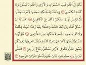 AYFA 117 RAHLE BOY 5 Lİ KURAN-I KERİM CÜZLERİ (6 PARÇA)-6