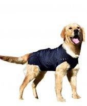 Win Pet Ameliyat Sonrası Köpek Elbisesi L 79*70 cm-2