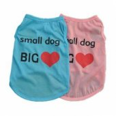 Kedi Ve Köpek İçin Small Dog Big Love...