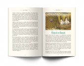 Harika Hikâyeler-3