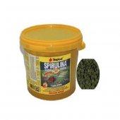 Tropical Spirulina Super Forte (%36 spirulina) 100 ADET
