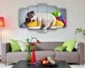 Sevimli Uyuyan Köpek Dekoratif 5 Parça Mdf Tablo