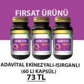 Ekinezya + Isırgan Kapsül (3 Adet)