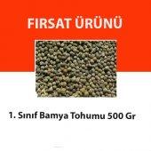 Bamya Tohumu 500gr