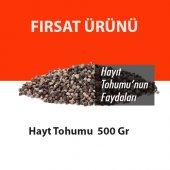 Hayıt Tohumu 500 Gr