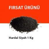 Siyah Hardal Tohumu 1 Kg