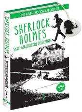Sherlock Holmes Saklı Gerçeklerin Gölgesinde