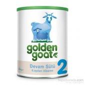 Golden Goat 2 Devam Sütü 400 Gr.