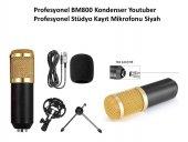 Profesyonel Bm800 Kondenser Youtuber Profesyonel Stüdyo Kayıt Mikrofonu (Gold)