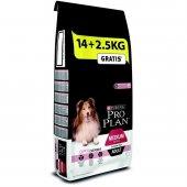 ProPlan Somonlu Hassas Yetişkin Kuru Köpek Maması 14+2,5 Kg