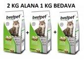 Best Pet Lovers Tavuklu Kedi Maması 2 Kg + 1 Kg