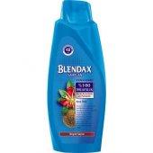 Blendax Şampuan 550 Ml Kına Özlü