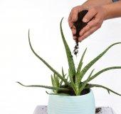 Biohumus Organik Bitki Besin Gübresi 25 Kg TEKLİ (62,5 Litre)-3