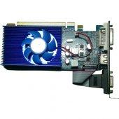 Seclife 2GB Radeon HD 6450 DDR3 64 Bit HDMI DVI VGA LP Single Fan-2