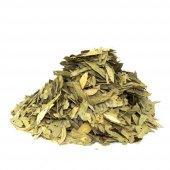 Sinameki (Cassia Angustifolia) 100 Gr
