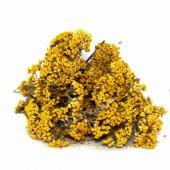 Civan Perçemi Sarı Civanperçemi 1 kg