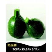 Kabak Tohumu Topak(Bomba) Siyah 5 G. (Takribi 20 Tohum)