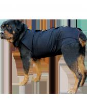 Win Pet Ameliyat Sonrası Köpek Elbisesi XL 84*74 cm-4
