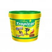 Ahm Tropical Granulat Balık Yemi Kova 10 Lt 3 Kg