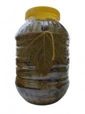 Bağ Yaprağı 5 Litrelik Pet Şişede Salamura Sarmalık Damarsız Net 3 Kg