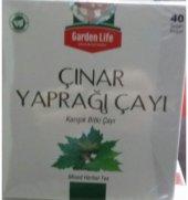 Çınar Ağacı Yaprağı Çayı - Çınar Yaprağı Çayı