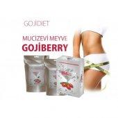 Goji Diet (Gojidiet) Set
