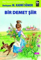 Bir Demet Şiir Mehmet Kadri Sümer