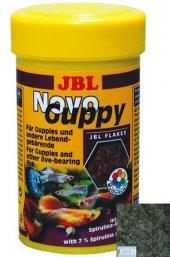 Jbl Novoguppy 250ml 50 G. Pul Yem