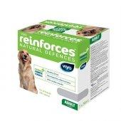 Viyo Reinforces Yetişkin Köpekler İçin Gıda...